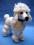 Poodle (Click to read more)