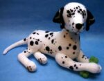 Dalmatian (Click to read more)