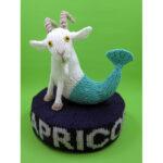 Capricorn the Sea Goat** (Click to read more)